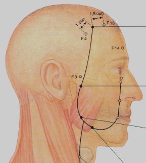 az arc felső alsó ízületének kezelése