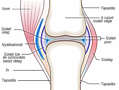 degradáló ízületi kezelés lábak kicsi ízületeinek deformáló artrózisa
