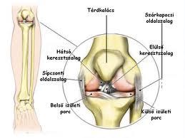fájdalmas lehet-e a csípőízület osteochondrosisban