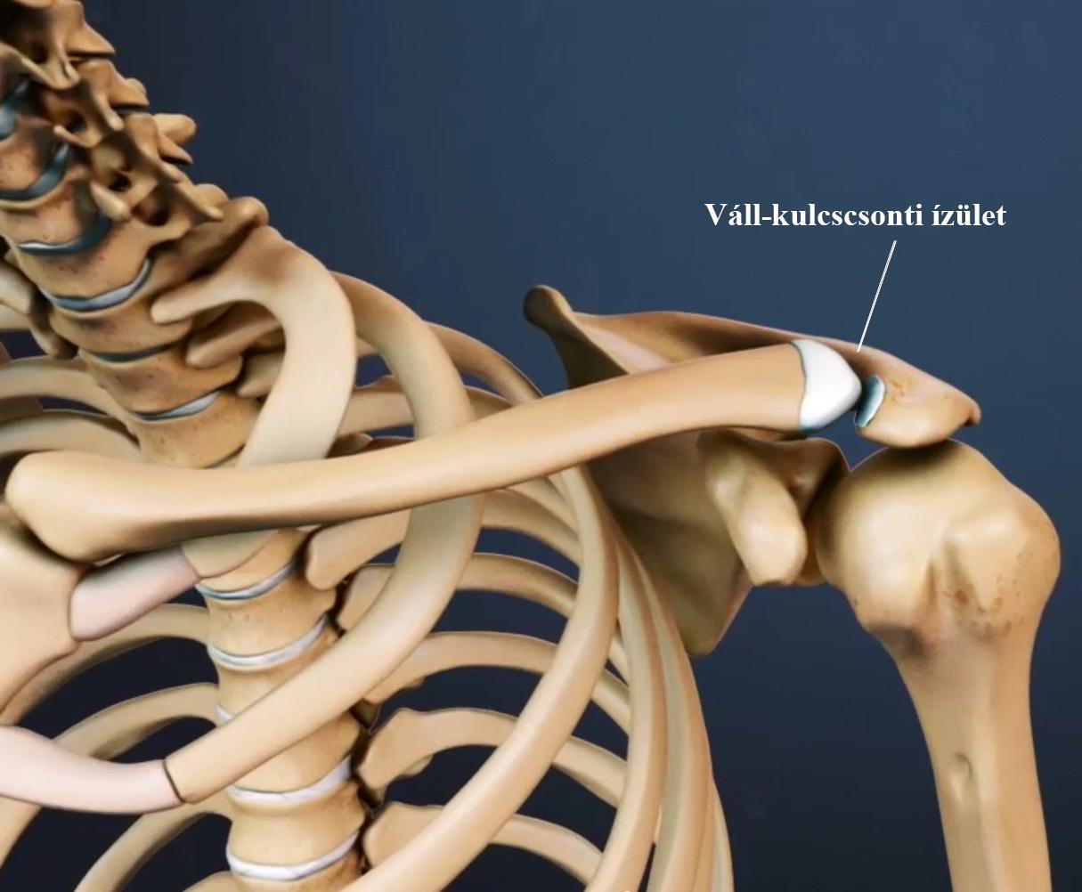 a nyaki vállízület ideges kezelése ízületi fájdalom hűtéskor