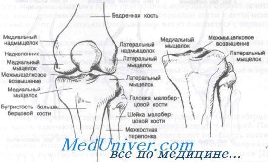 A lábtörések tünetei és kezelése a sérülés helyétől és típusától függően