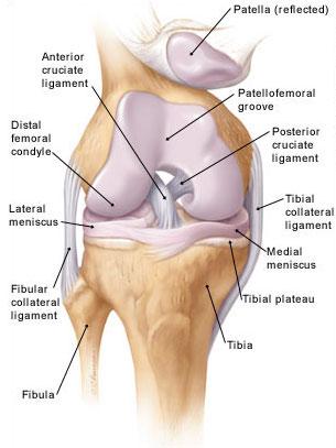 térdízület ízületi tünetei 2 fok csípőízületi gyulladás 2. rész