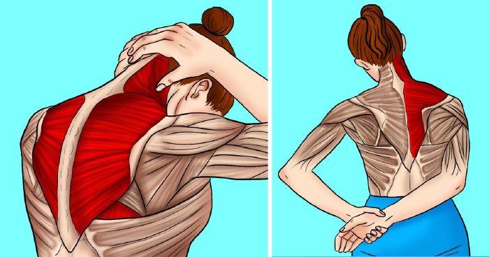 fájdalom vállízület gyakorlat
