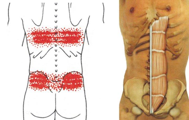 Kenőcs a csukló fájdalmára - A térd ízületeinek sérülésének jelei