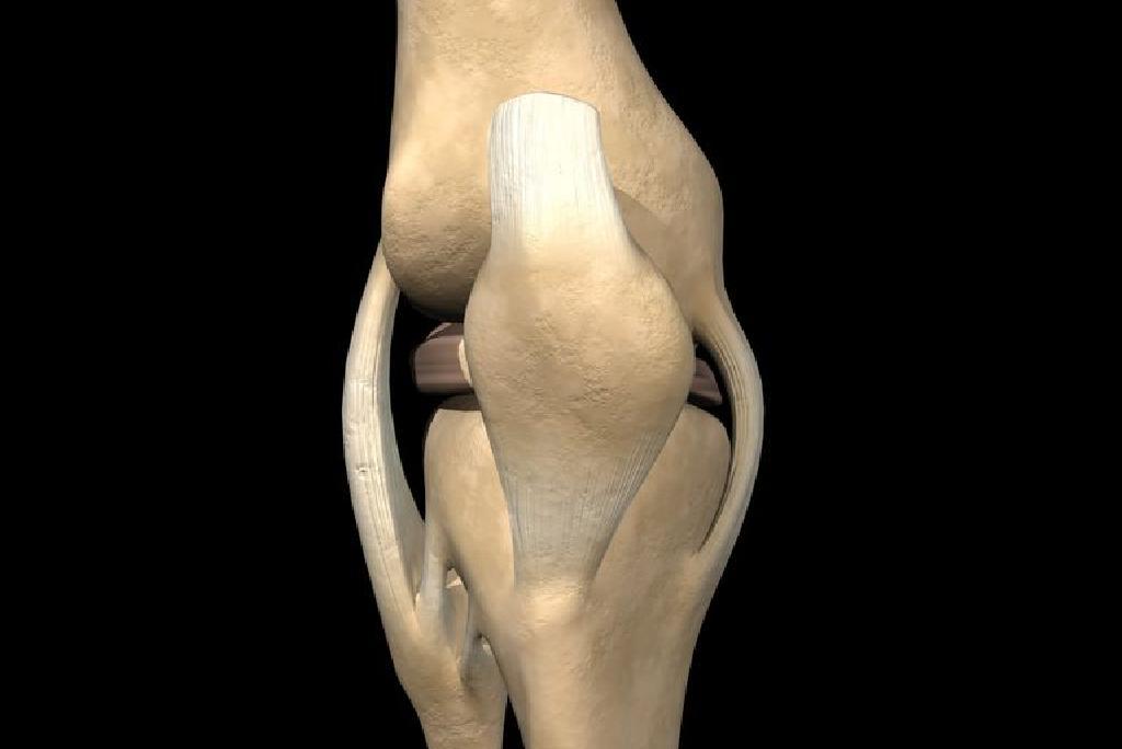 ĺzületi fájdalom: több millió embert érint…