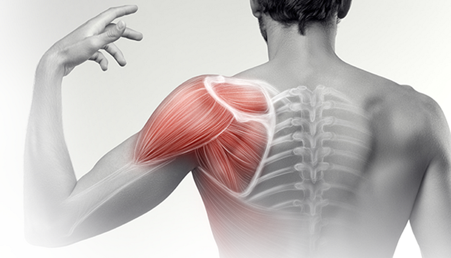 a mellkas gerincének nemcrovertebralis artrózisa csukló-styloiditis kezelés