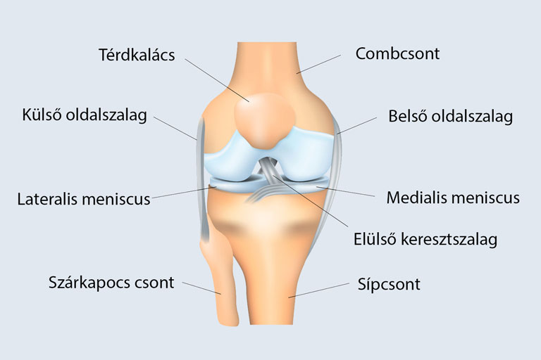 fájdalmas meniszkusz a térd tünetei