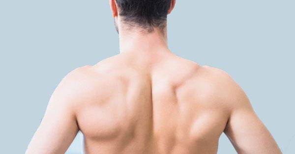 vállízület fájdalom szerkezete