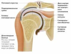 Gyakorlatok a csípő füléből - Diszplázia