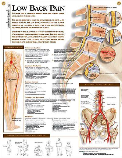 lumbosacral fájdalom a csípőízületben az akupunktúra segít az ízületi fájdalmak kezelésében