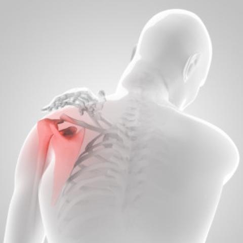 vállízület gyakorlatok a fájdalomra