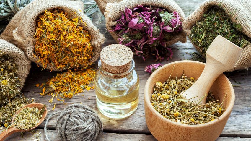 5 gyógynövény, ami segít a prockopás elleni harcban