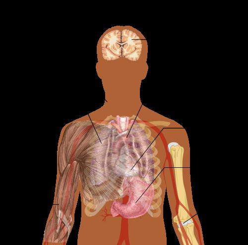 tüdőgyulladás és ízületi fájdalom