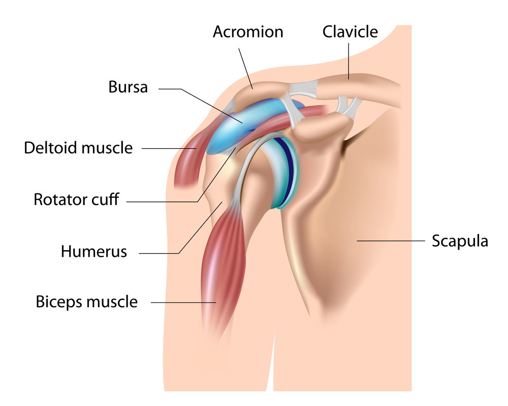 milyen kenőcs a bokaízület ízületi gyulladásáért könyökízület osteoarthritis 1 fokos kezelése