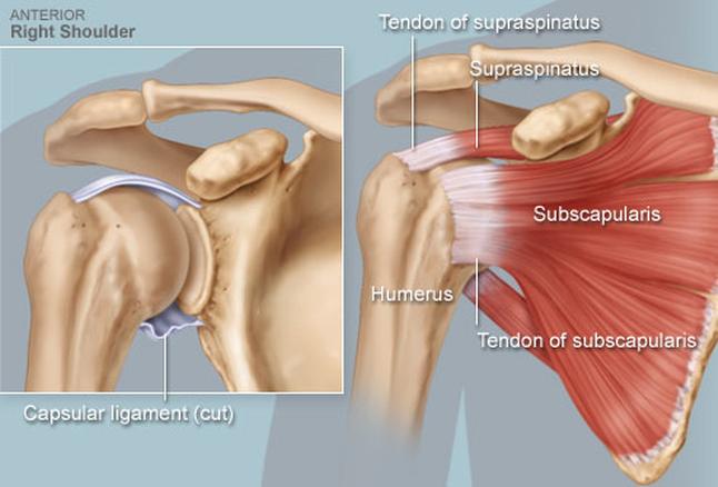 a vállízület kezelésének tünetei kézízületi gyulladás tünetek kezelése