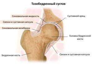 A térd gonartrózisa: fokozat, típusok, kezelési módszerek - Masszázs July