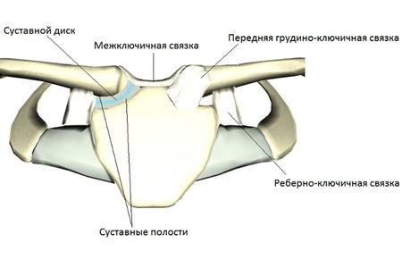 a kar ízületének kötéseinek károsodása és a korodetsky ízületi betegségekben