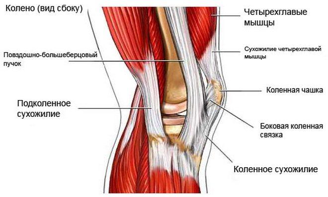 a térdízület 2. fokú ízületi gyulladása hogyan kezelhető a térd deformáló ízületi kezelése