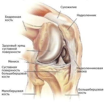 a térdízület artrózisának érzéstelenítése ha az ízületek fájnak különböző helyeken