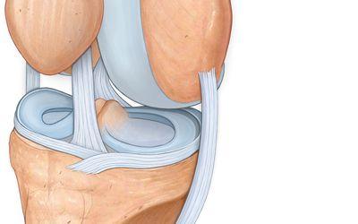Mi a veszélyes térd bursitis? - Csukló July